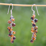 Tiger eye dangle earrings, 'Caramel Berries'